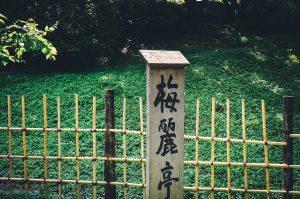 langues-rares-traduction